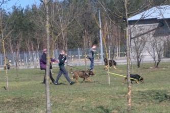 Wizyta w schronisku dla zwierząt w Radomiu